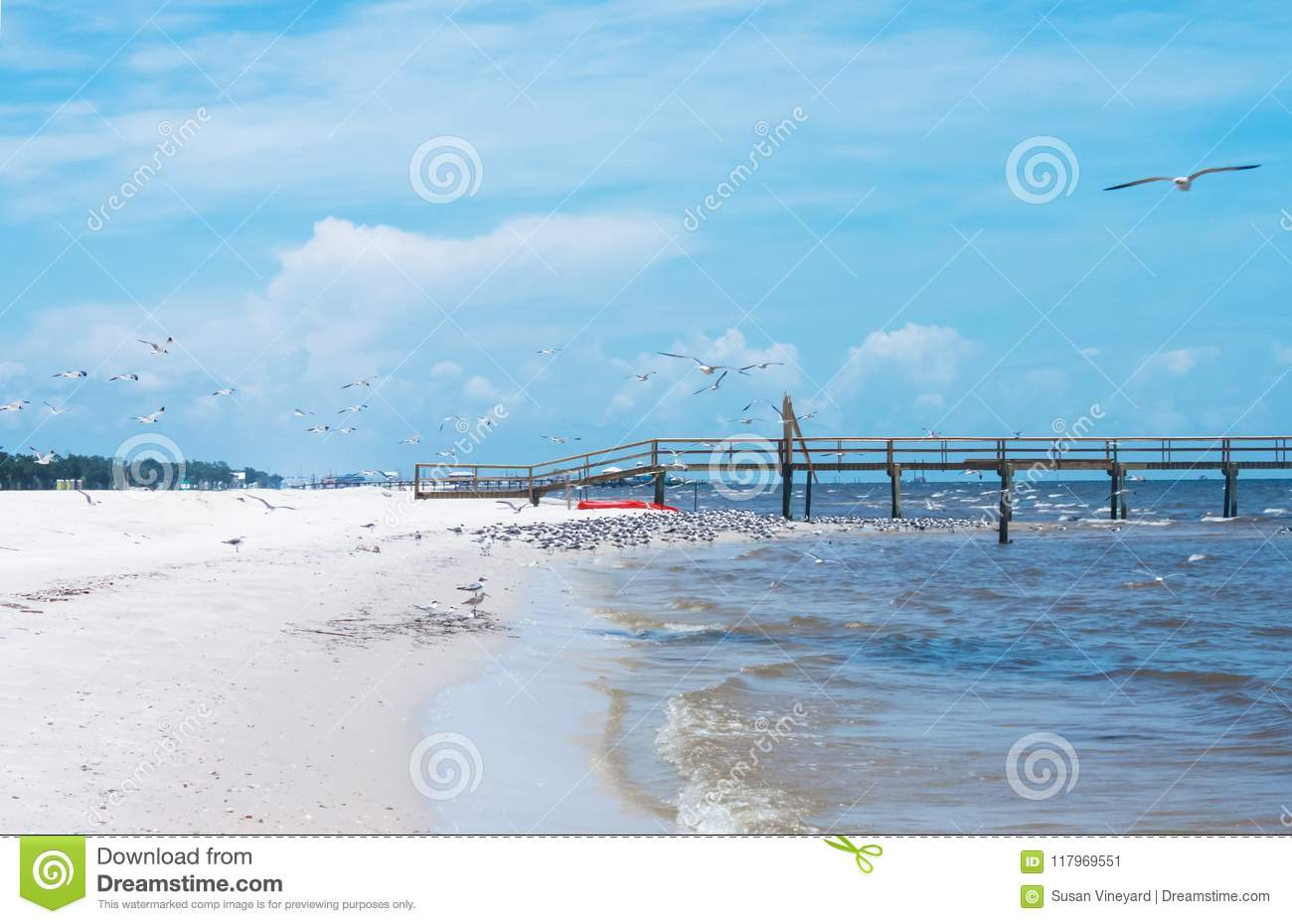 Seagulls swarming near a wooden pier in southern United States along the Gulf of Mexico