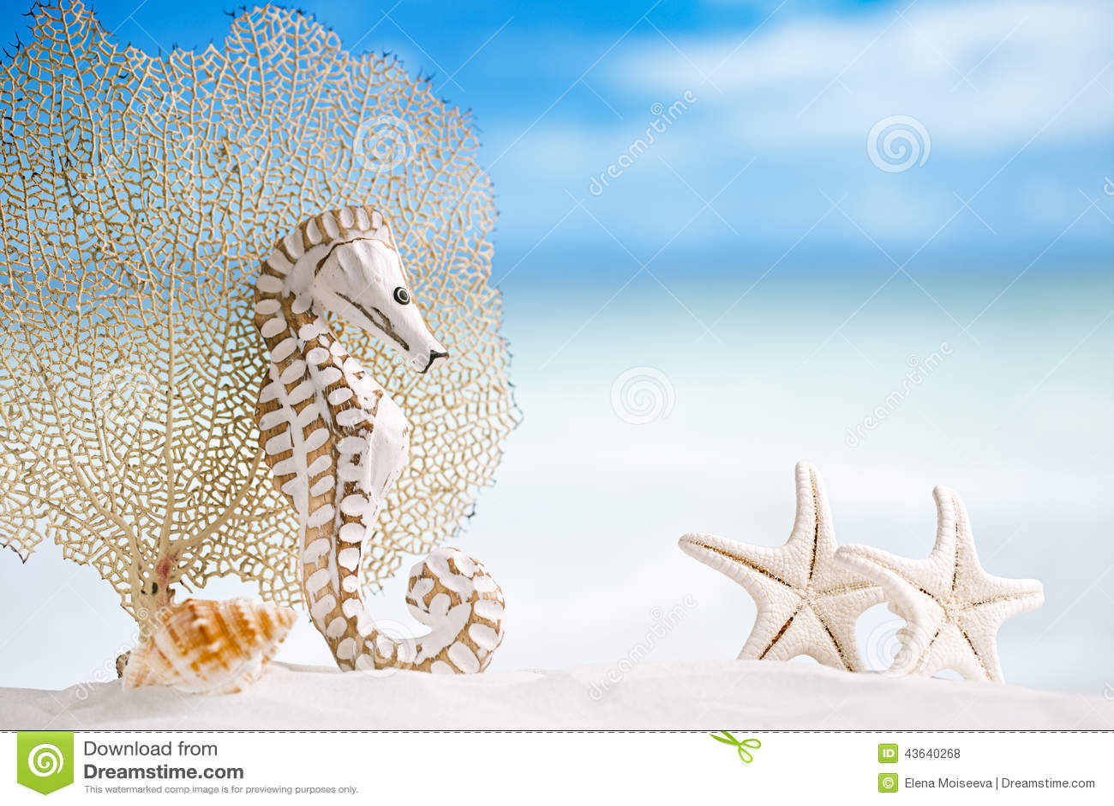 Pine cones starfish 93