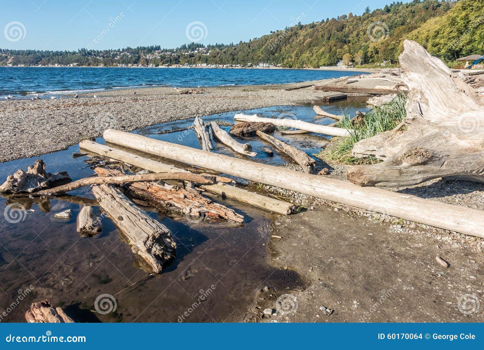 Seahurst Dirftwood Logs