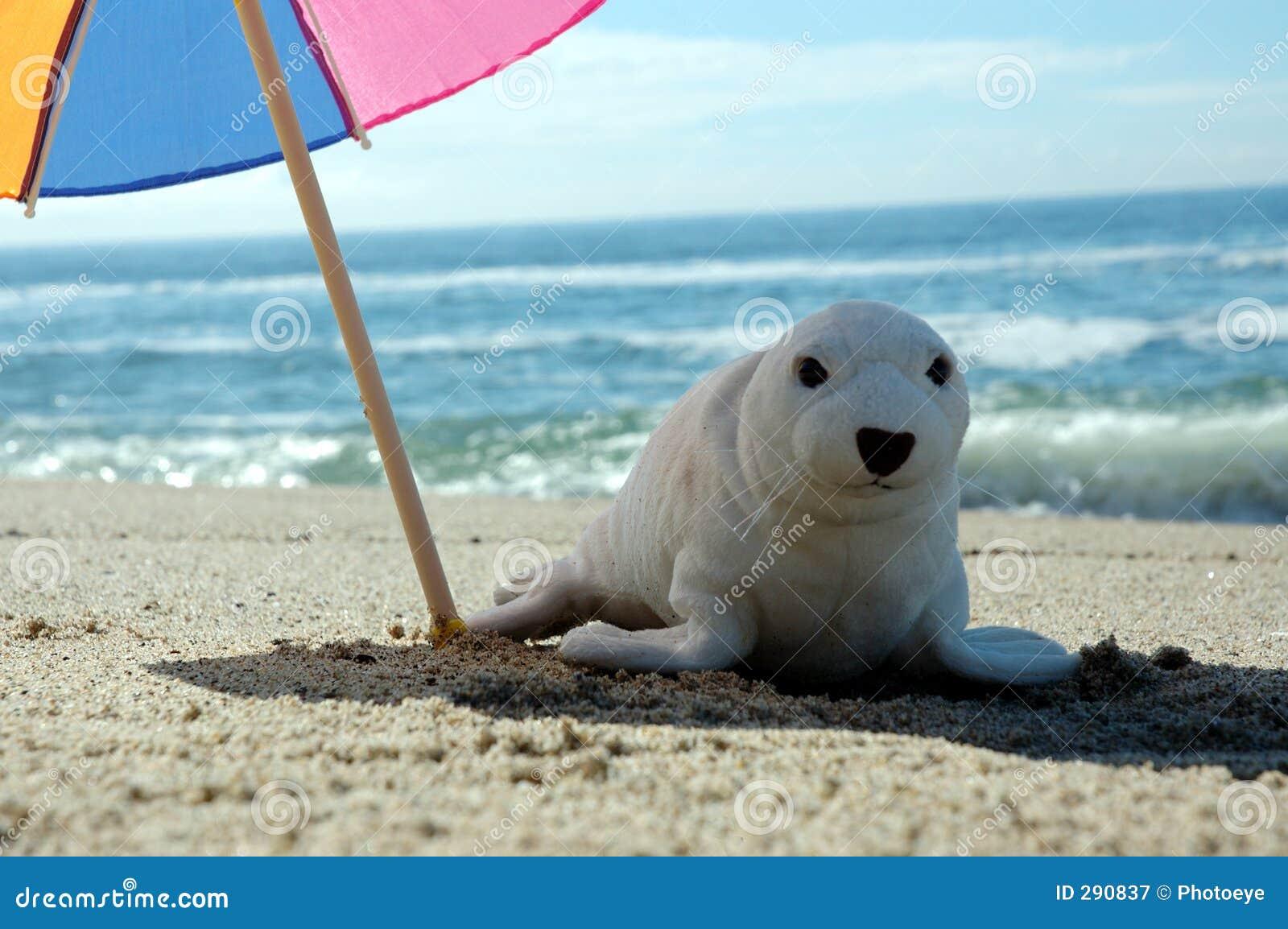Seal and umbrella 3