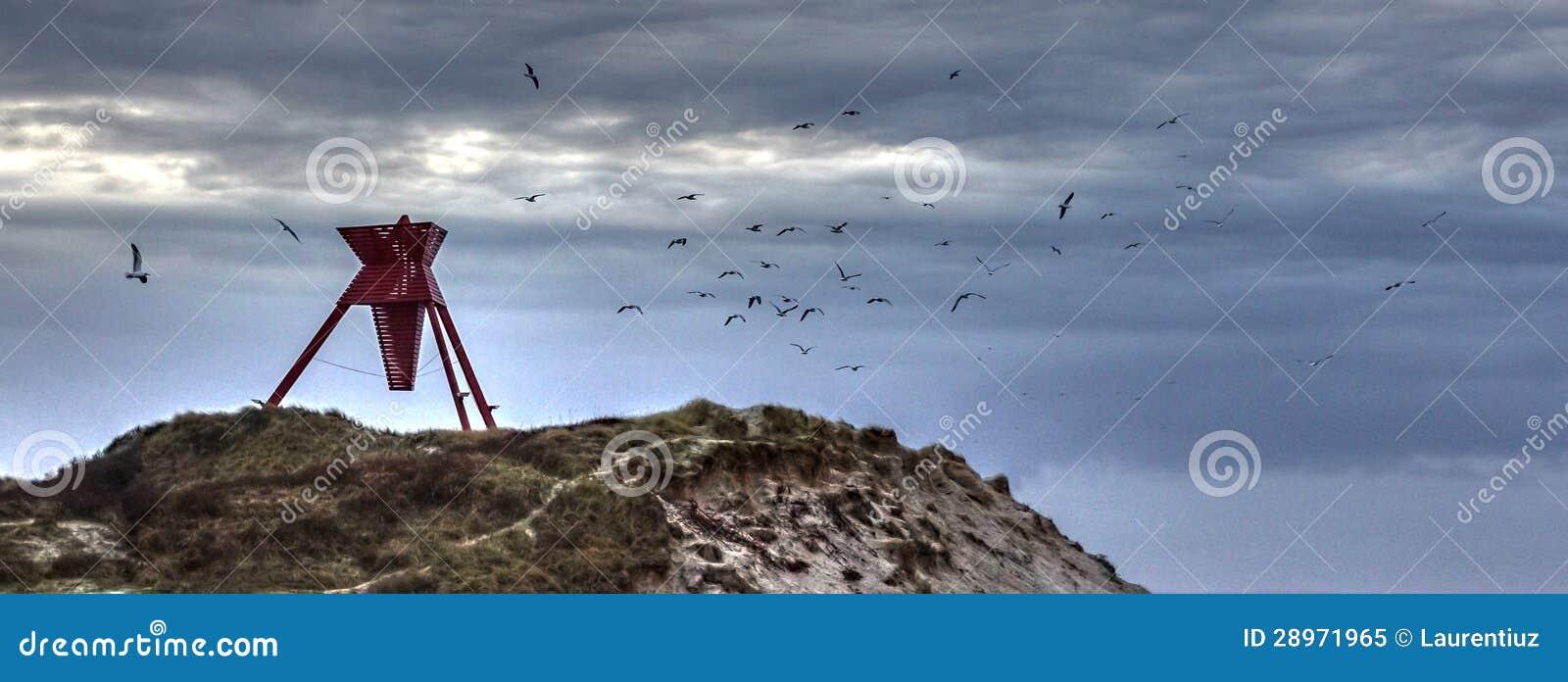 Seamark z ptakami