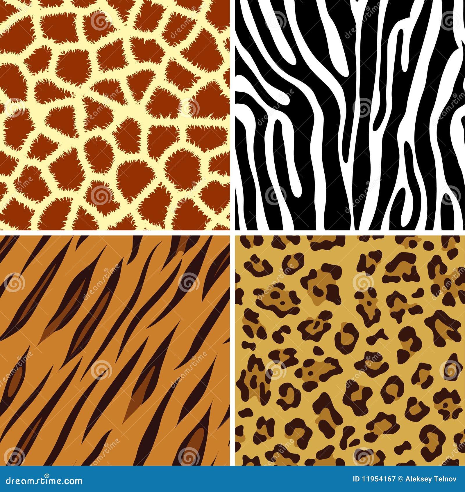 animal four giraffe illustration leopard print