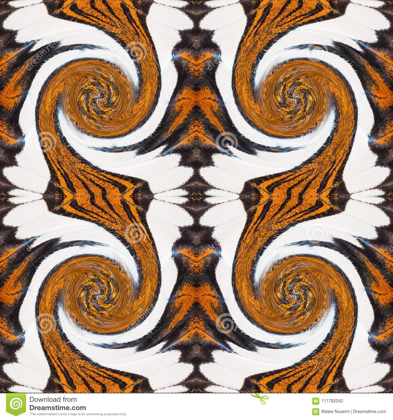 Background created from butterfly wings