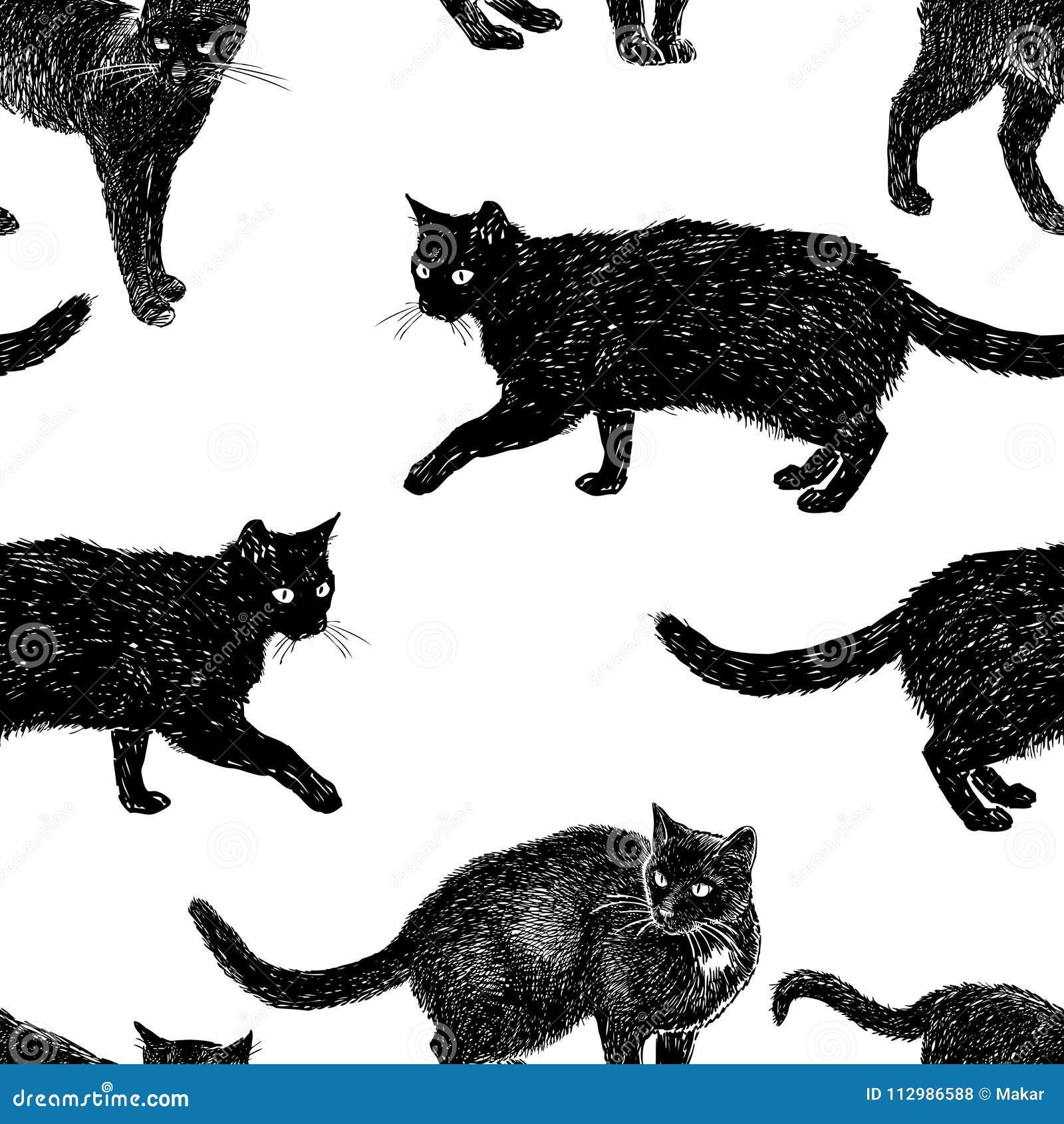 Pattern of drawn black cats