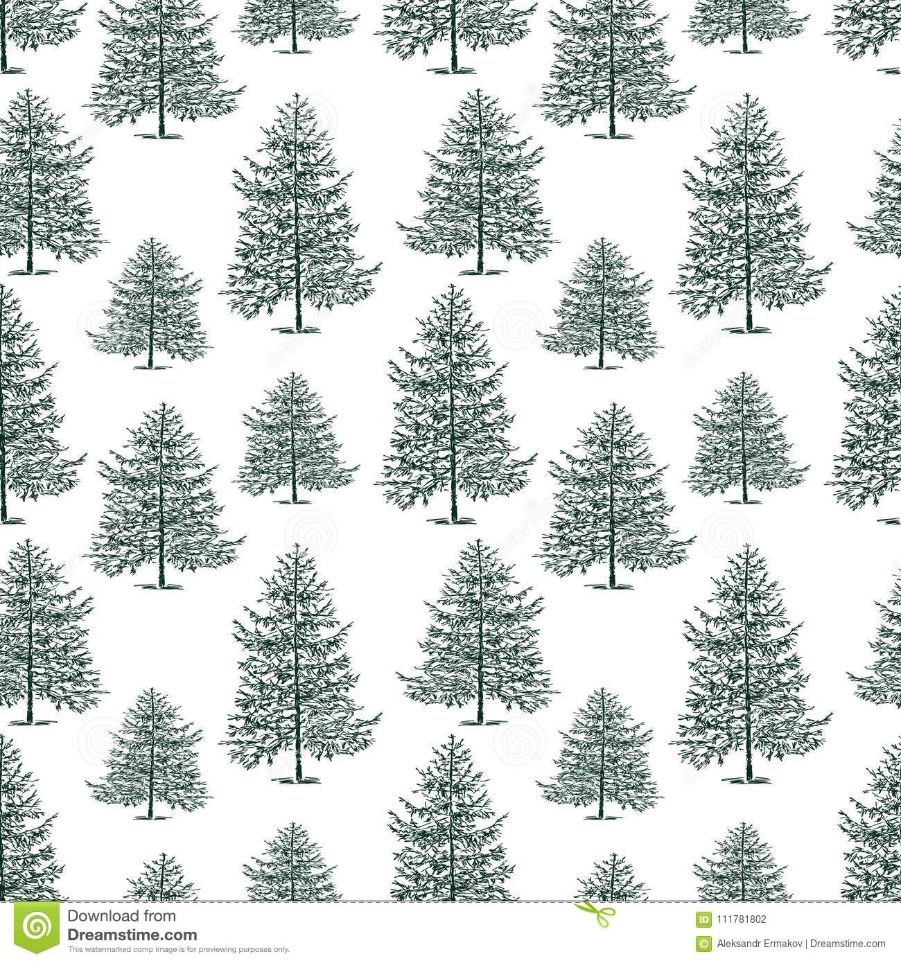 Seamless background of the fir trees
