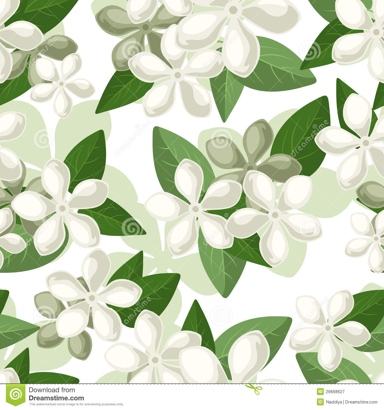 Vector seamless background with white flowers.