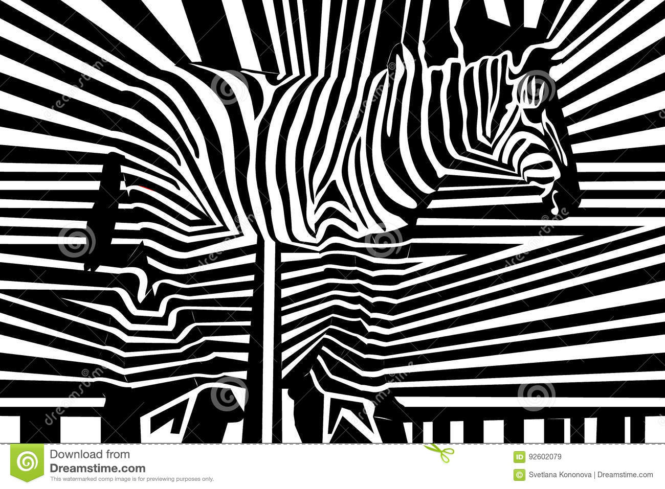 Seamless black and white stripped pattern with zebra
