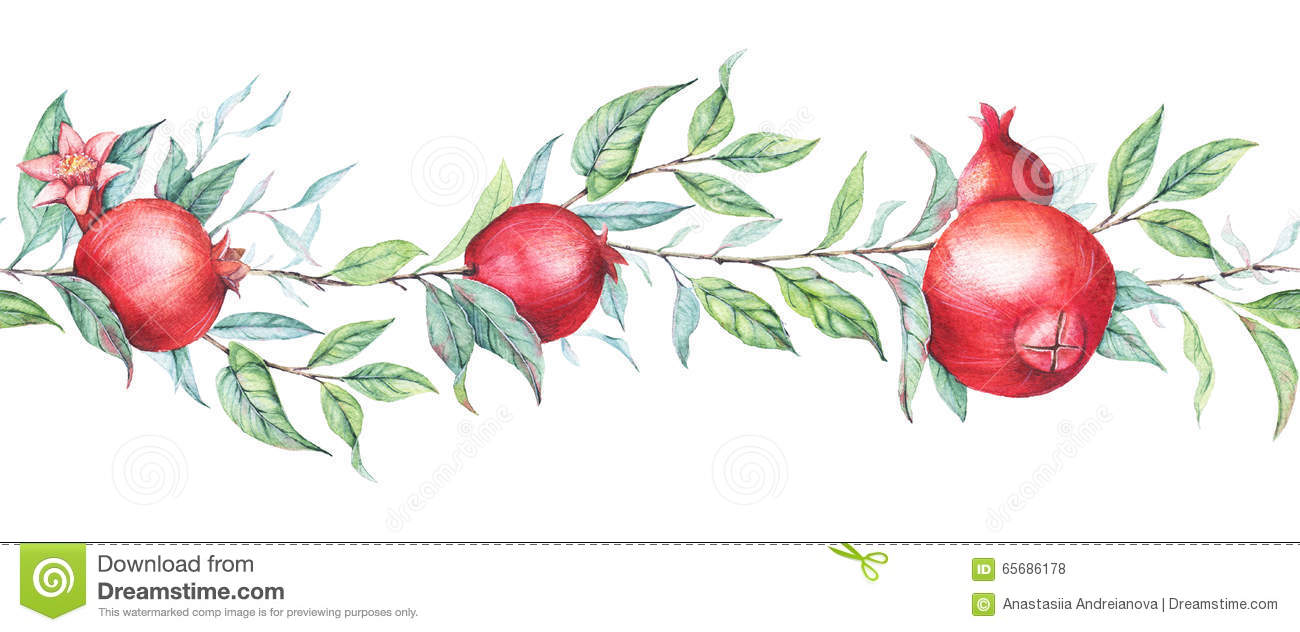 Seamless Border Pattern With Watercolor Pomegranates ...