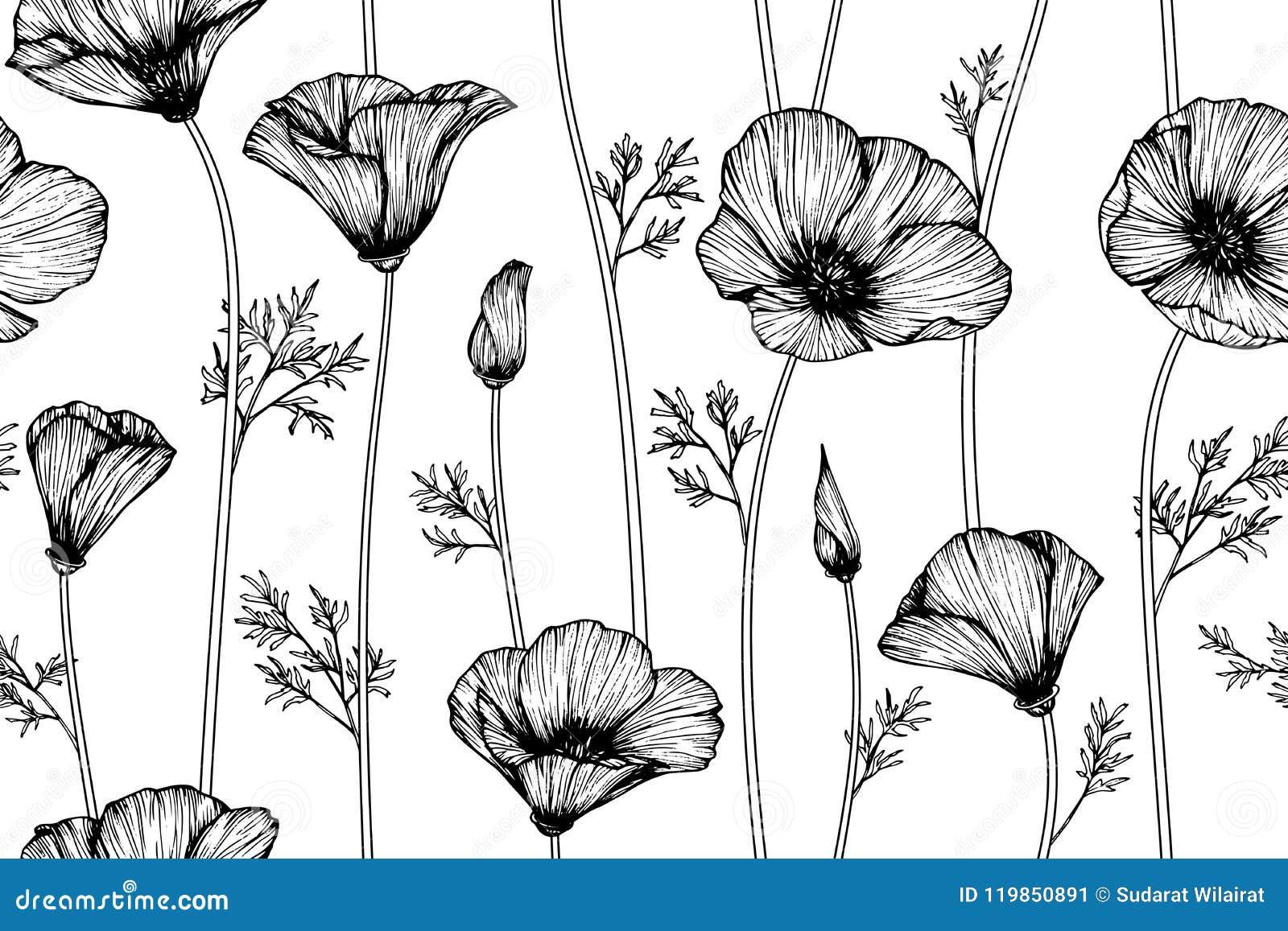 Seamless california poppy flower pattern background stock download seamless california poppy flower pattern background stock illustration illustration of anemone beauty mightylinksfo