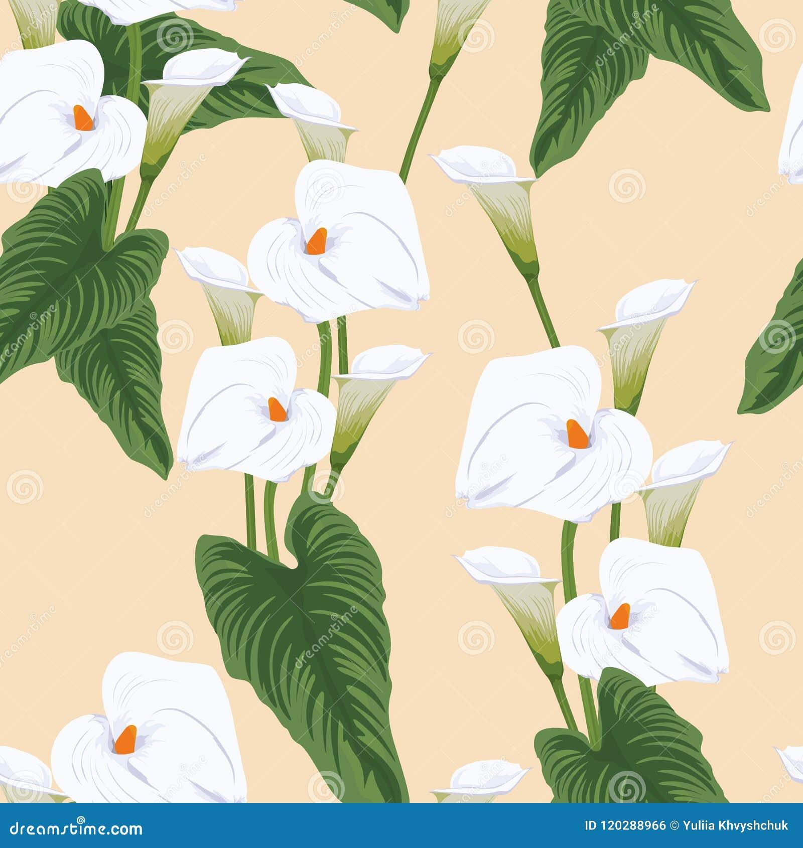 Seamless calla lilies flower background elegant fashion colorful seamless calla lilies flower background elegant fashion colorful pattern with flowers izmirmasajfo