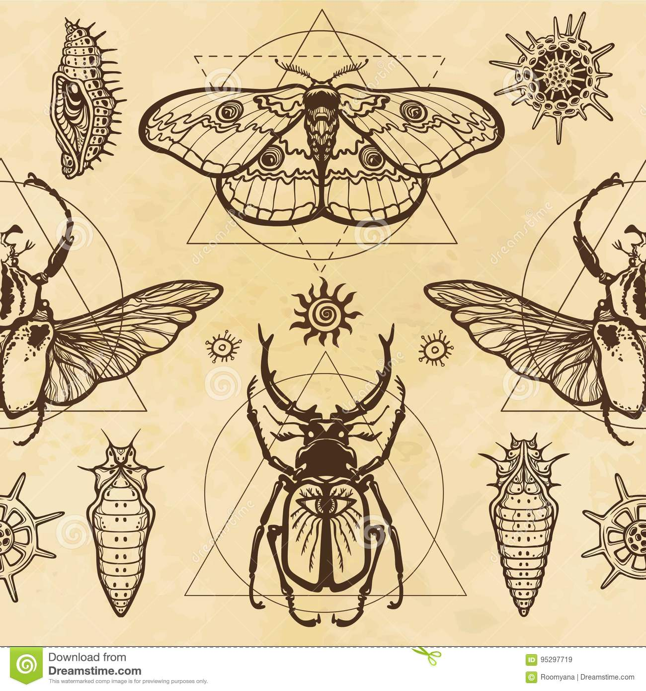 3472202d4 Seamless color pattern: image of a butterfly, larva, bug Goliath, horned bug