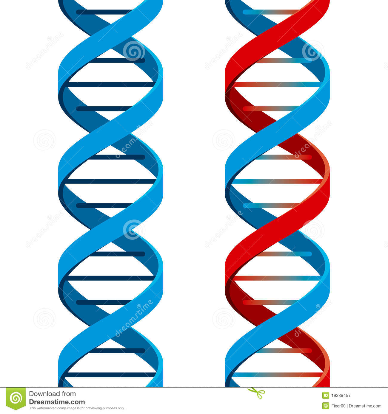 Seamless DNA Symbol Royalty Free Stock Photography Image 19388457