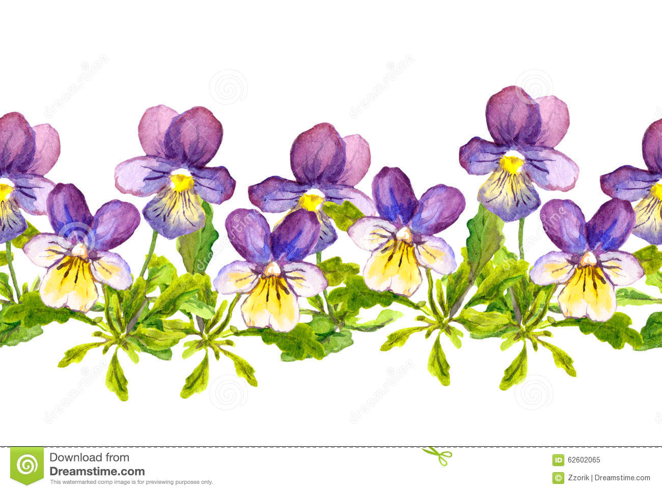 seamless floral border band with viola flowers on white purple pansy clip art Pansy Border