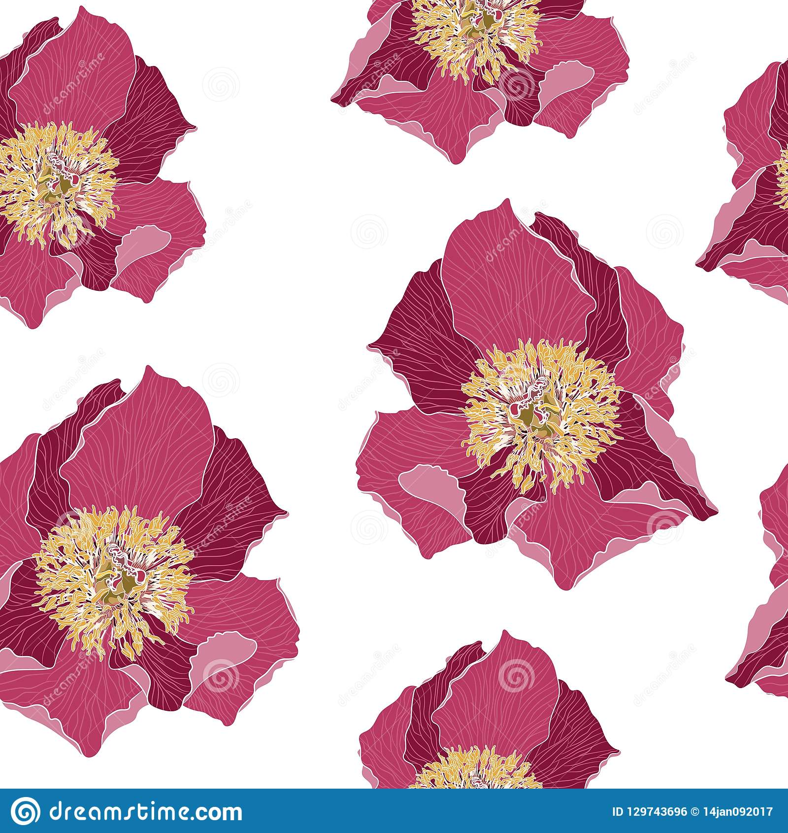 Seamless Floral Pattern With Light Magenta Peonies Peony Flowers