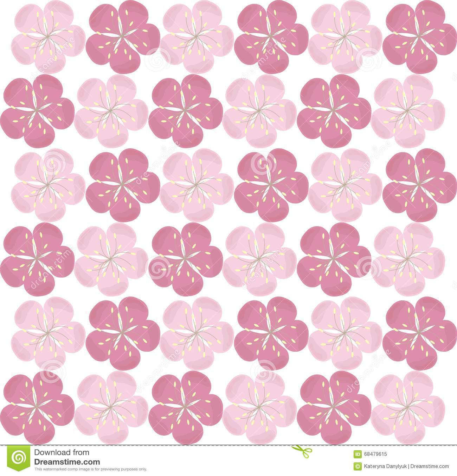 Seamless floral texture pink sakura flowers on white background background design element floral flowers packaging pink sakura dhlflorist Images
