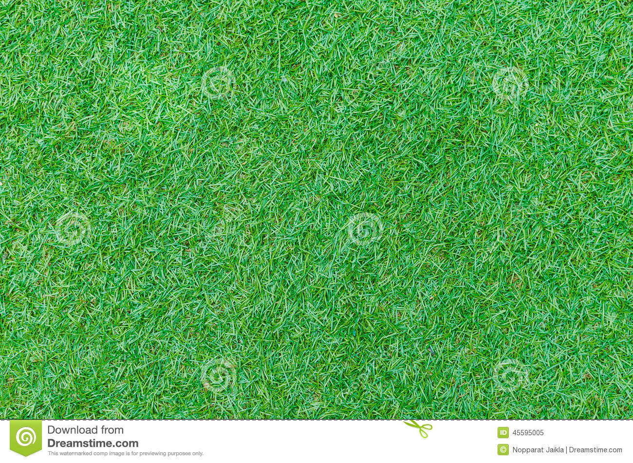 Seamless Green Grass Texture From Golf Course Stock Photo ...