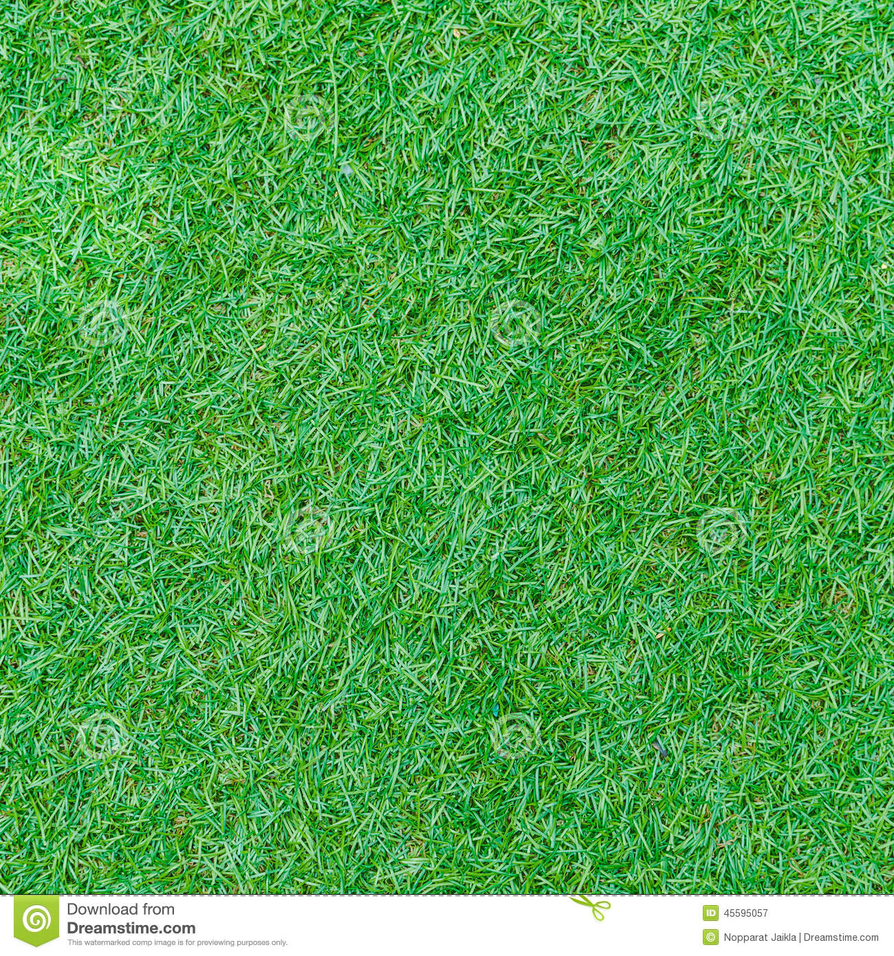 Seamless Green Grass Texture From Golf Course Stock Image ...
