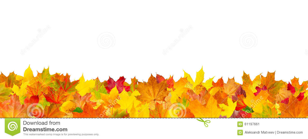Seamless pattern of autumn leaves horizontal background