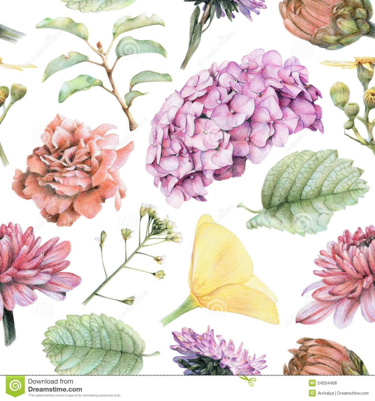 Pattern Flower Drawing With Colour Best 25 Flower Tattoo: Seamless Pattern With Beautiful Spring Flowers And Plants