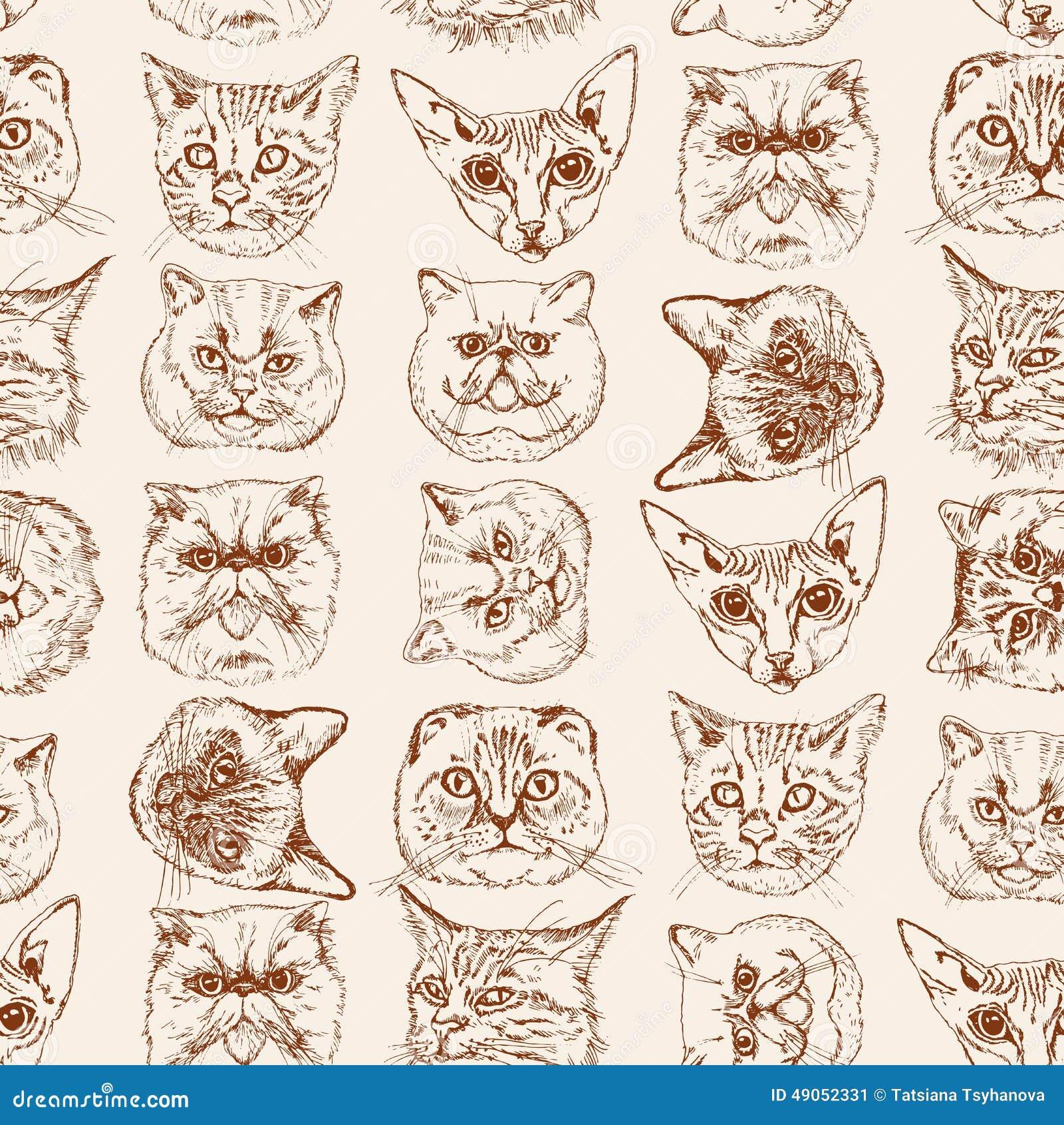 Seamless Pattern With Cats Siamese British Siberian