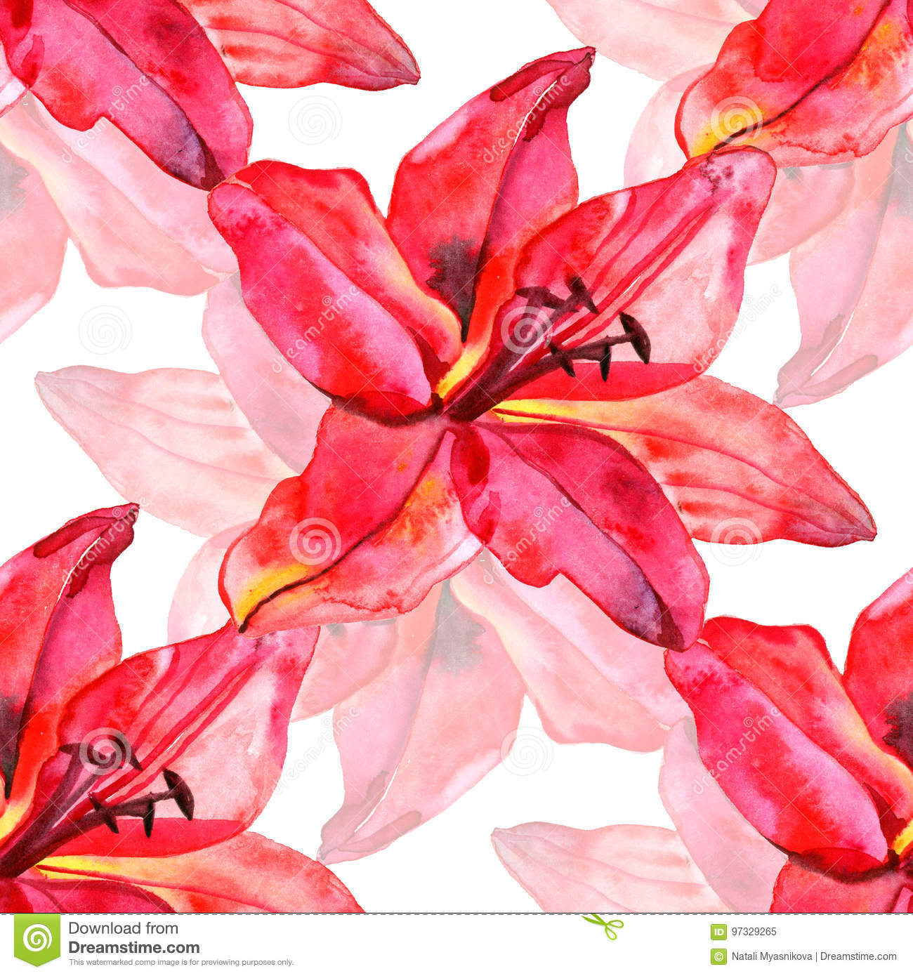 Seamless Pattern With Colorful Lilies Flower On White Background ...