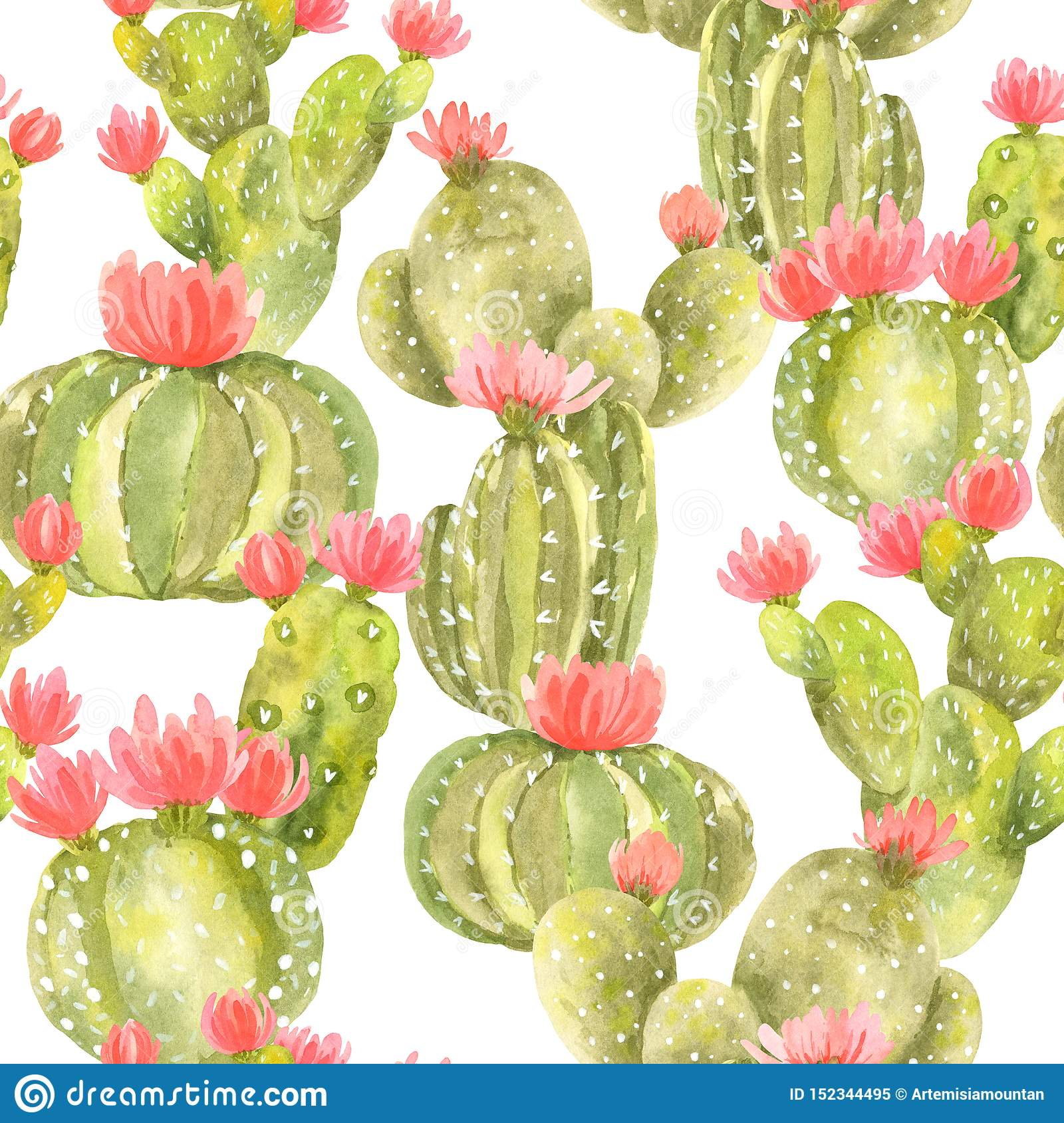 Seamless Pattern Of Cute Cactus With Pink Flowers Stock Illustration Illustration Of Bright Cactus 152344495