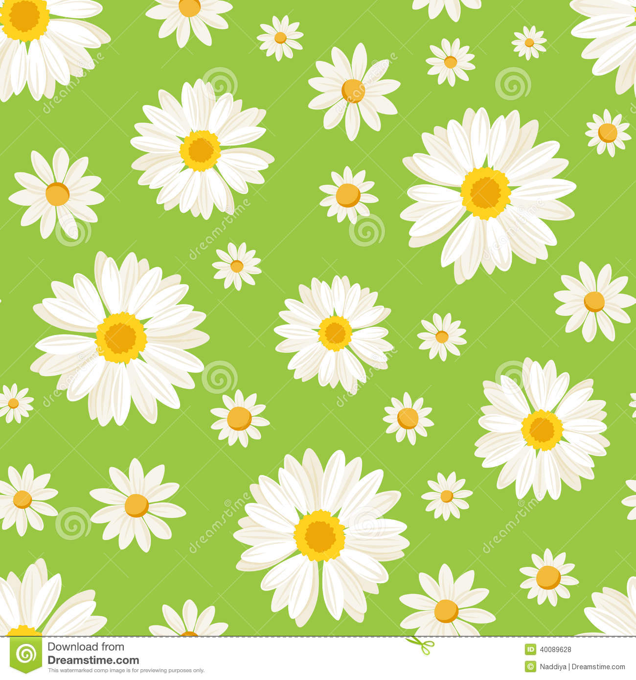 seamless pattern with daisy flowers on green vect stock
