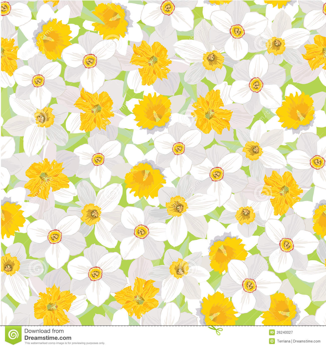 Seamless pattern with flowers daffodils stock vector for Template of a daffodil