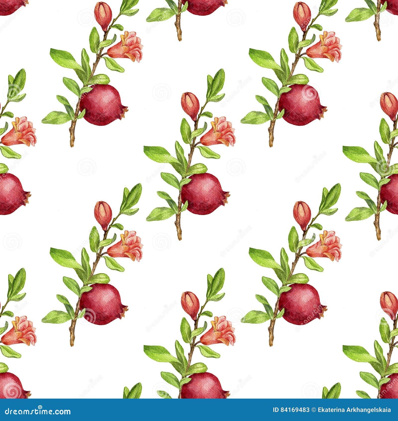 1300 x 1390 jpeg 225kBPomegranate