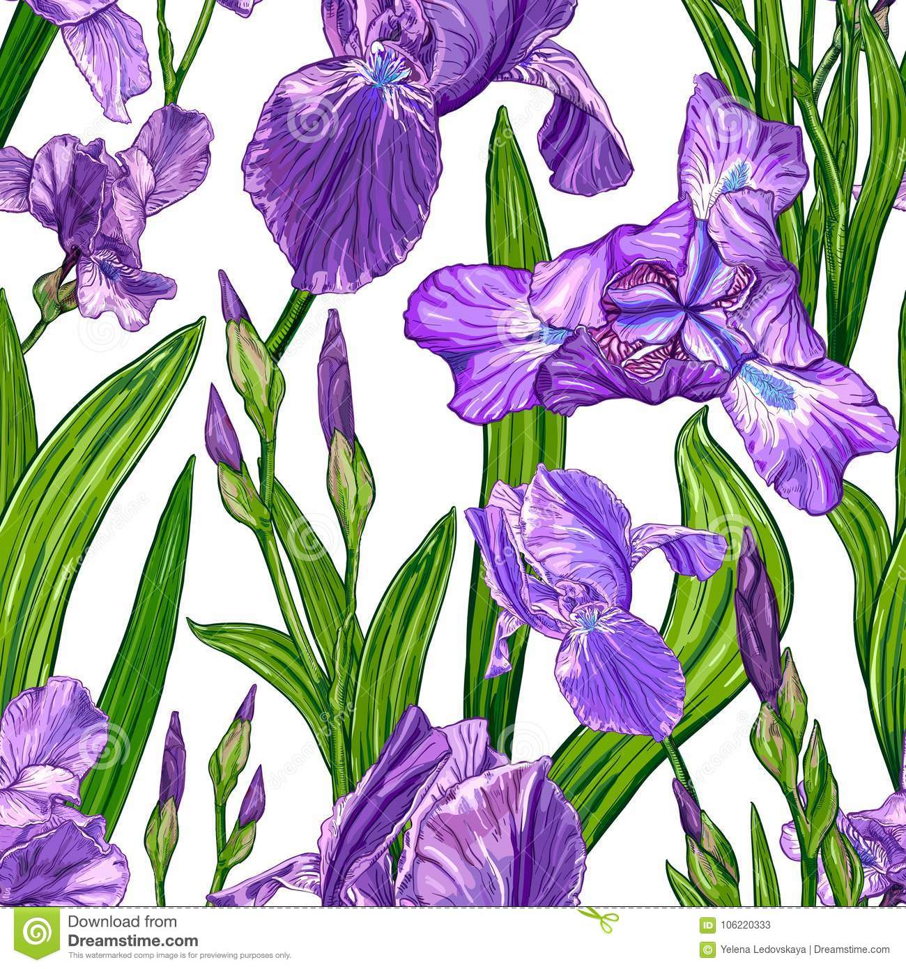 Seamless pattern with iris flowers stock vector illustration of seamless pattern with iris flowers on a white background hand drawn sketch template for textile floral design izmirmasajfo