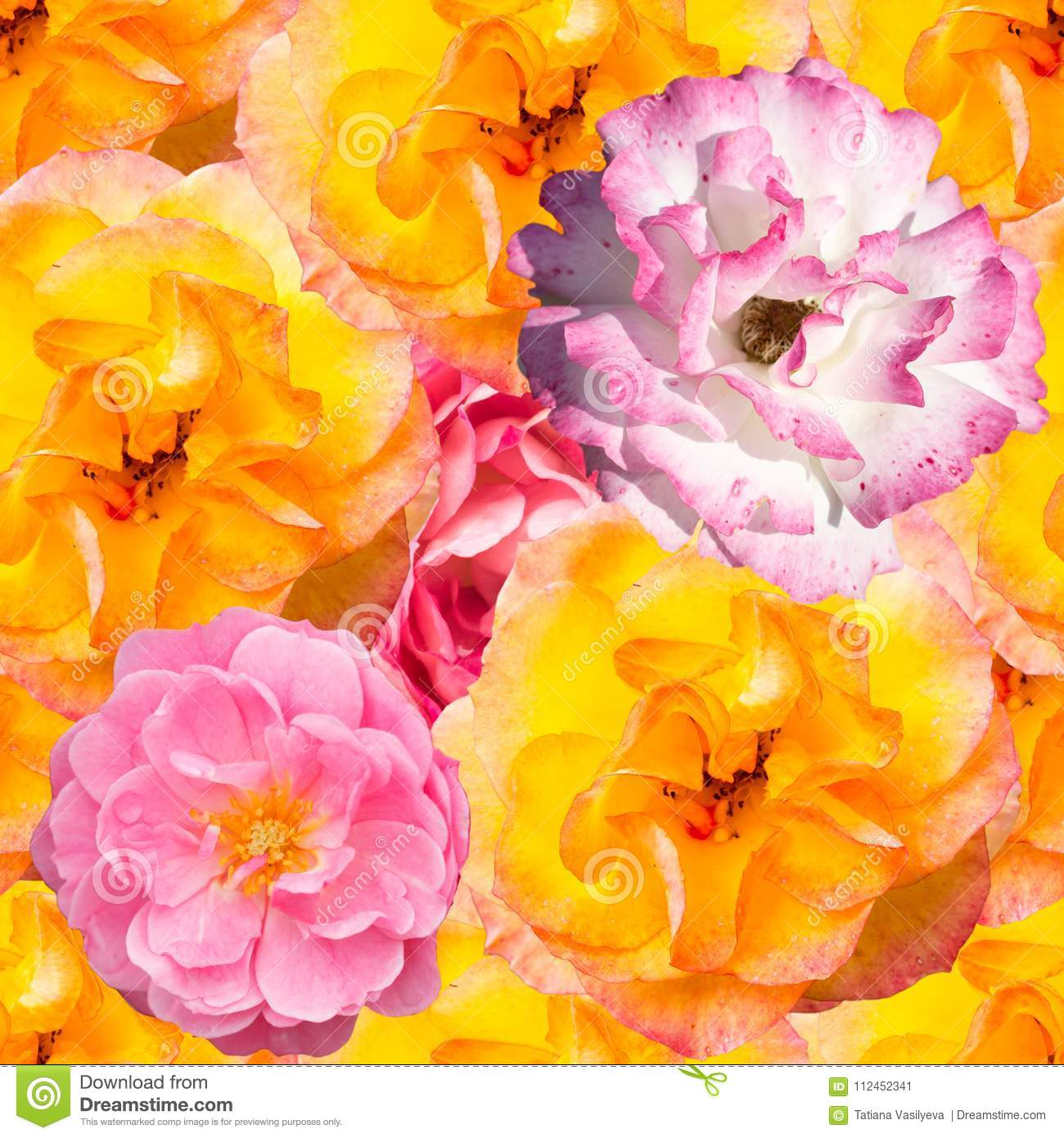 Seamless Pattern With Orange And Pink Flowers Stock Image Image Of