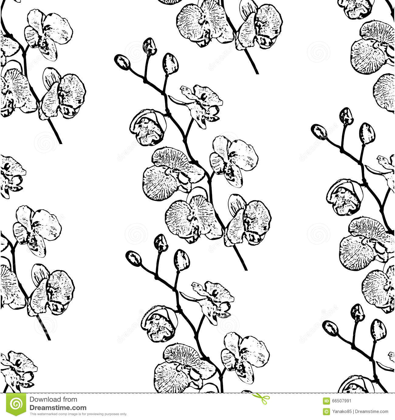 Seamless Pattern Outlines Branch Orchid Stock Vector
