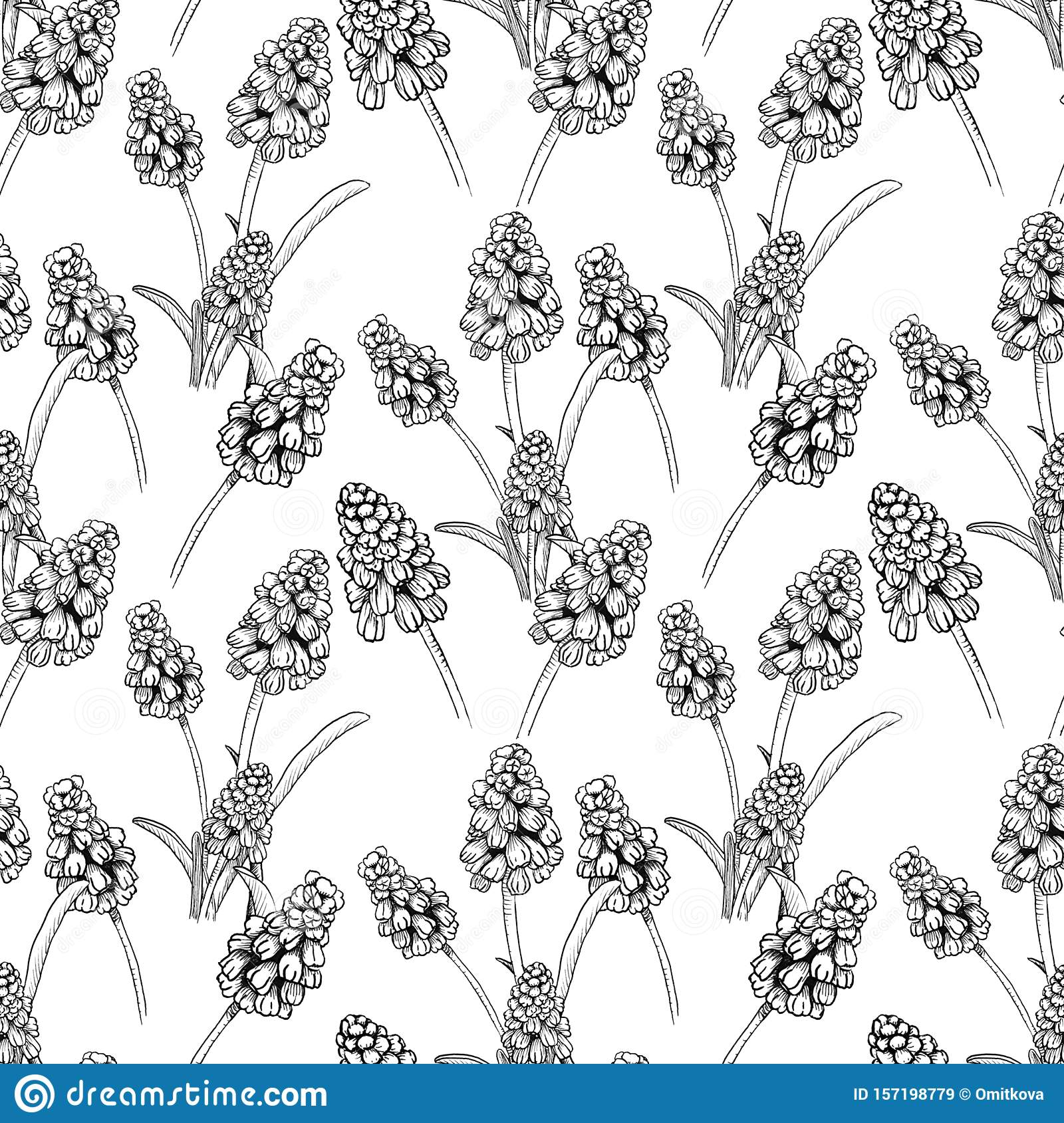 Seamless pattern with realistically painted ink Muscari flowers. Hand drawn illustration on white background modified to
