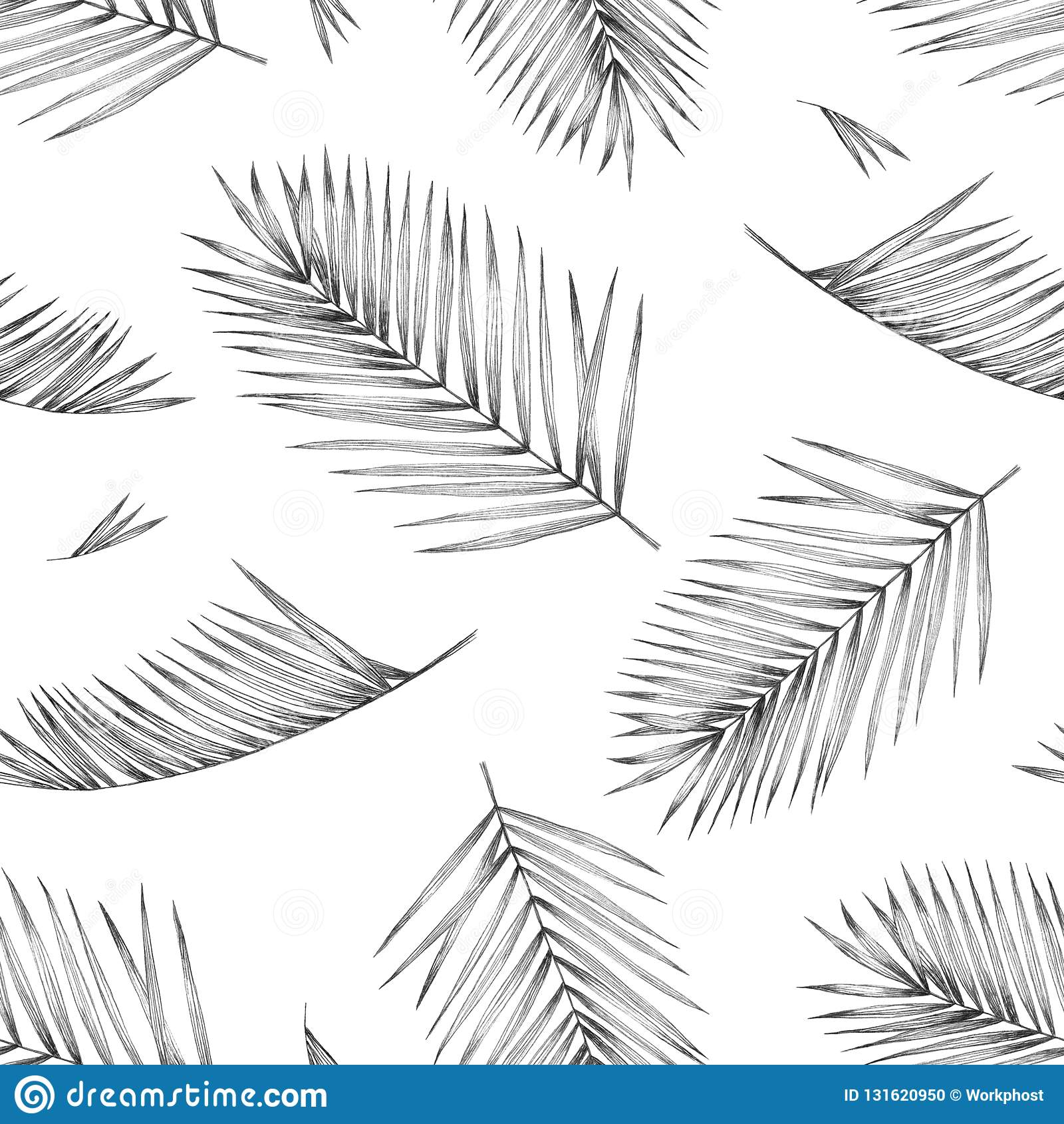 Seamless pattern with tropical palm leaves on white background. Design for textiles and fabrics. Hand pencil drawing