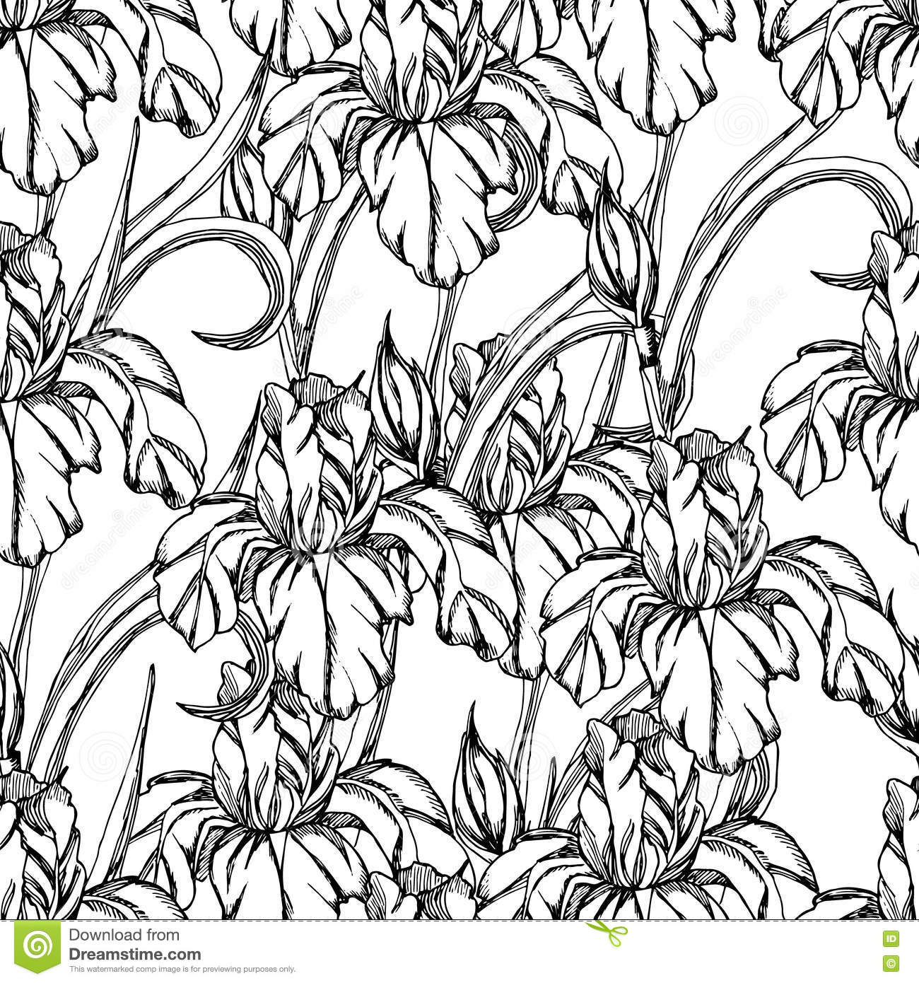 Seamless pattern vector decorative of iris flowers stock for Iris flower coloring page