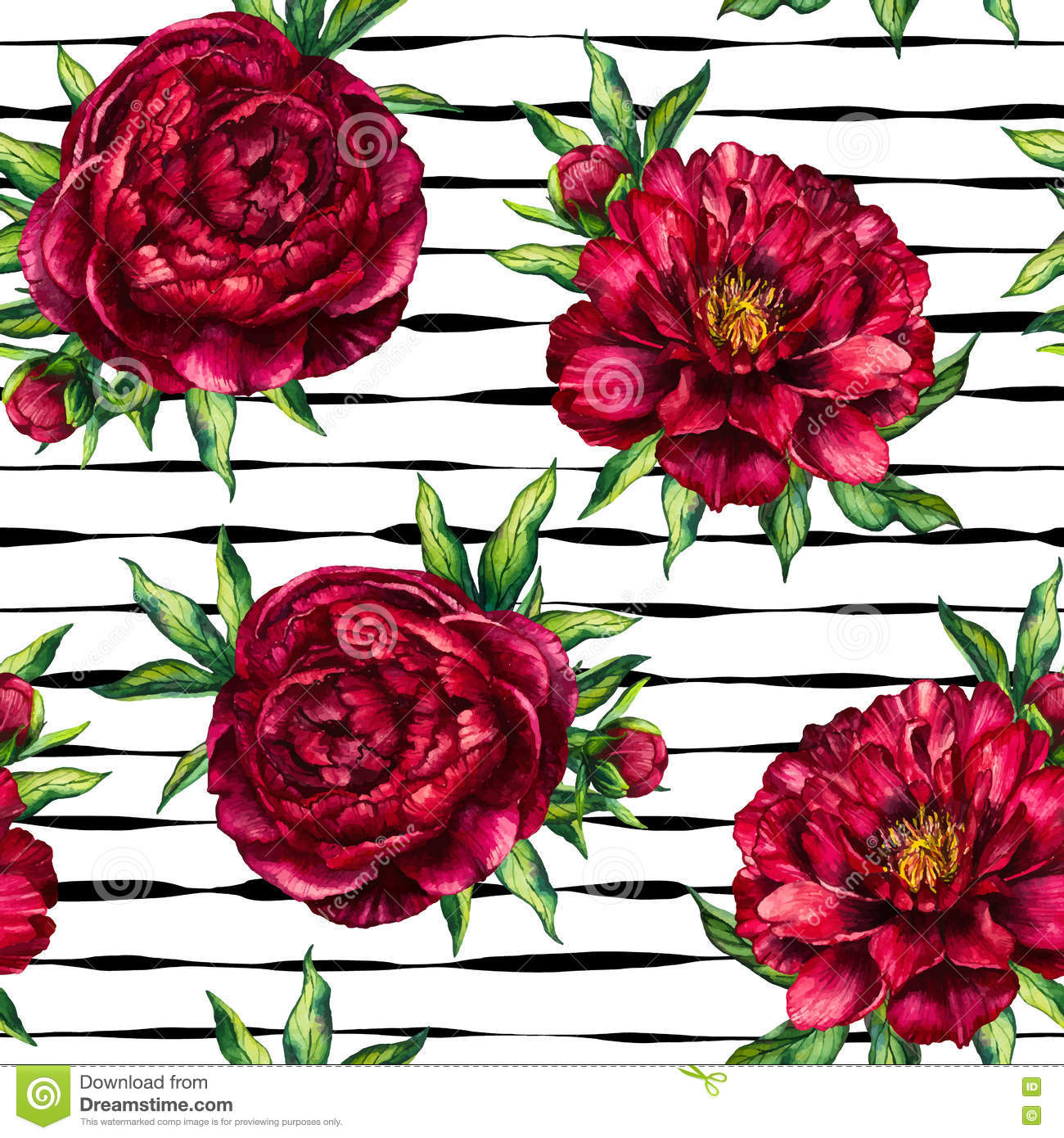 Seamless pattern watercolor flower peony marsala on black striped background