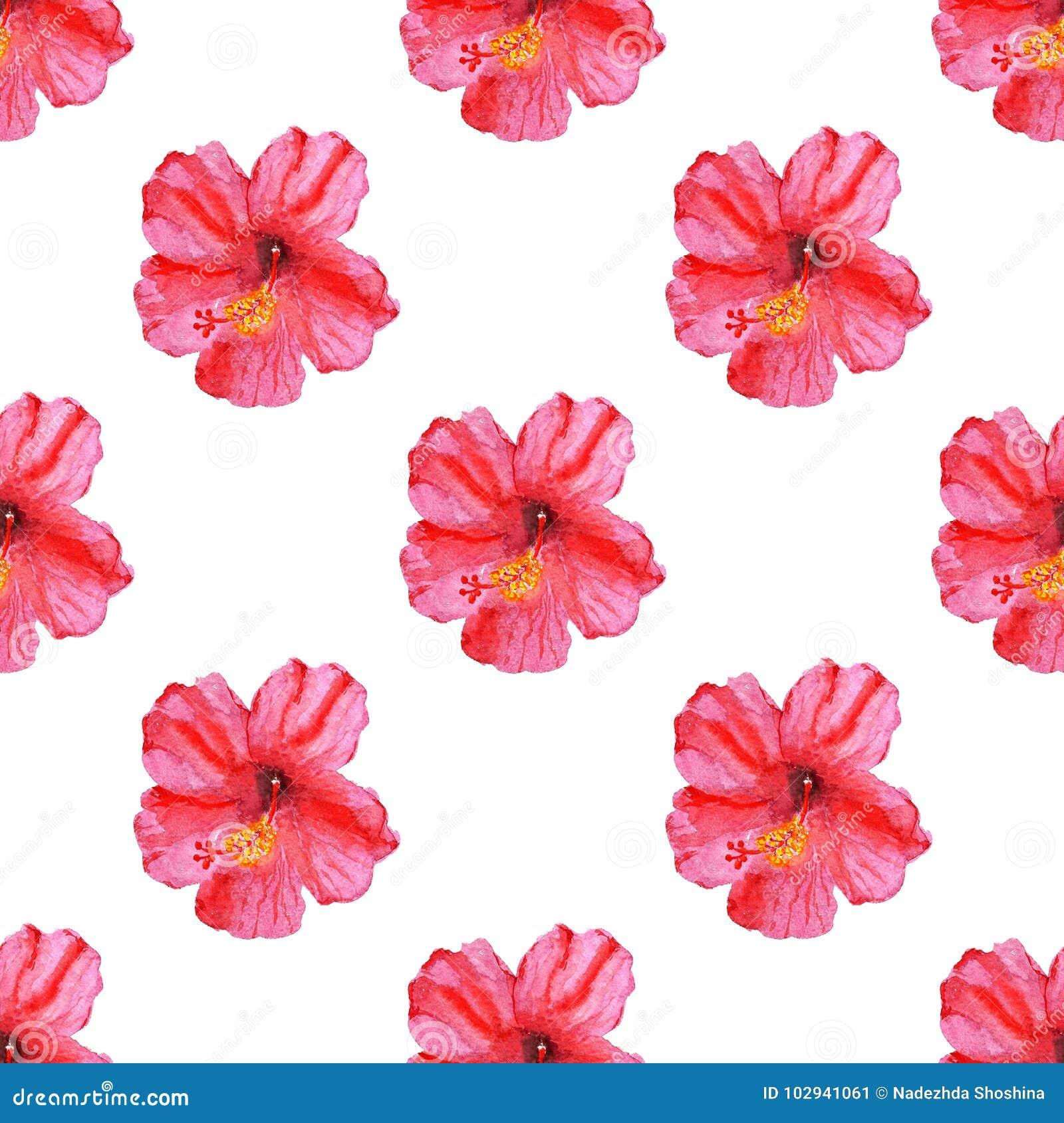 Seamless pattern with hibiscus flower stock illustration download seamless pattern with hibiscus flower stock illustration illustration of background paint 102941061 izmirmasajfo