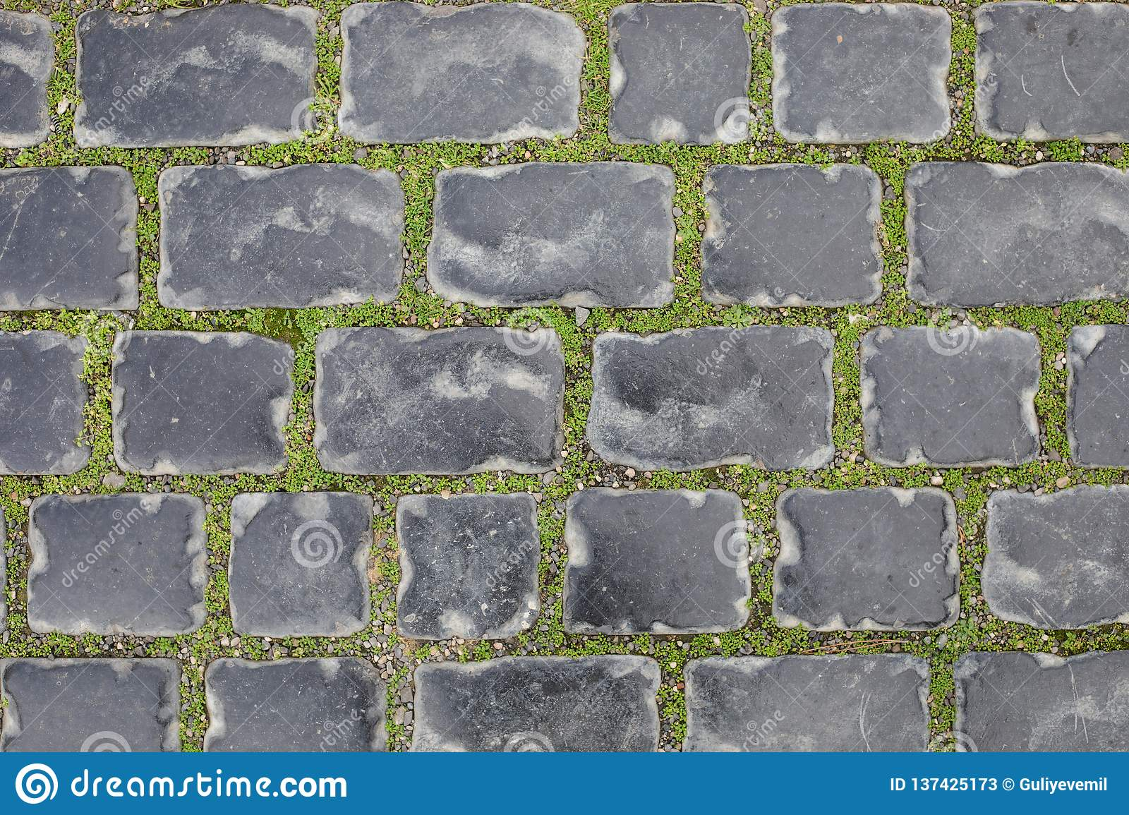 Seamless texture of a paving stone track on a green grass. baku azerbaijan in winter. Old city