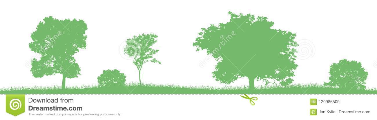 Seamless vector landscape with green deciduous trees and bushes.
