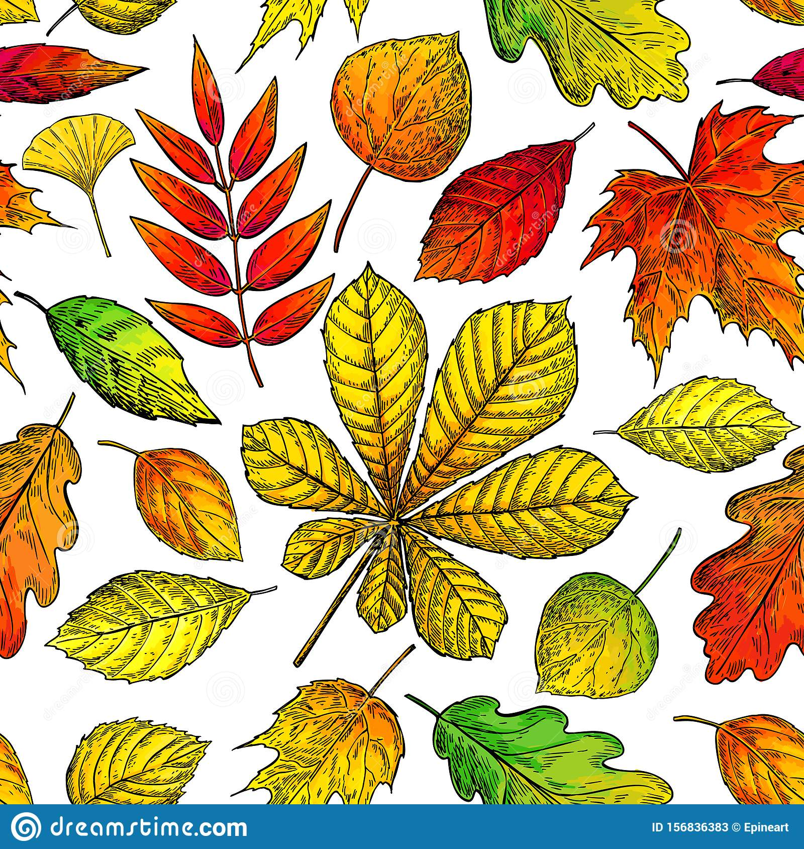 Seamless Vector Pattern With Autumn Leaves. Hand Drawn Detailed ...