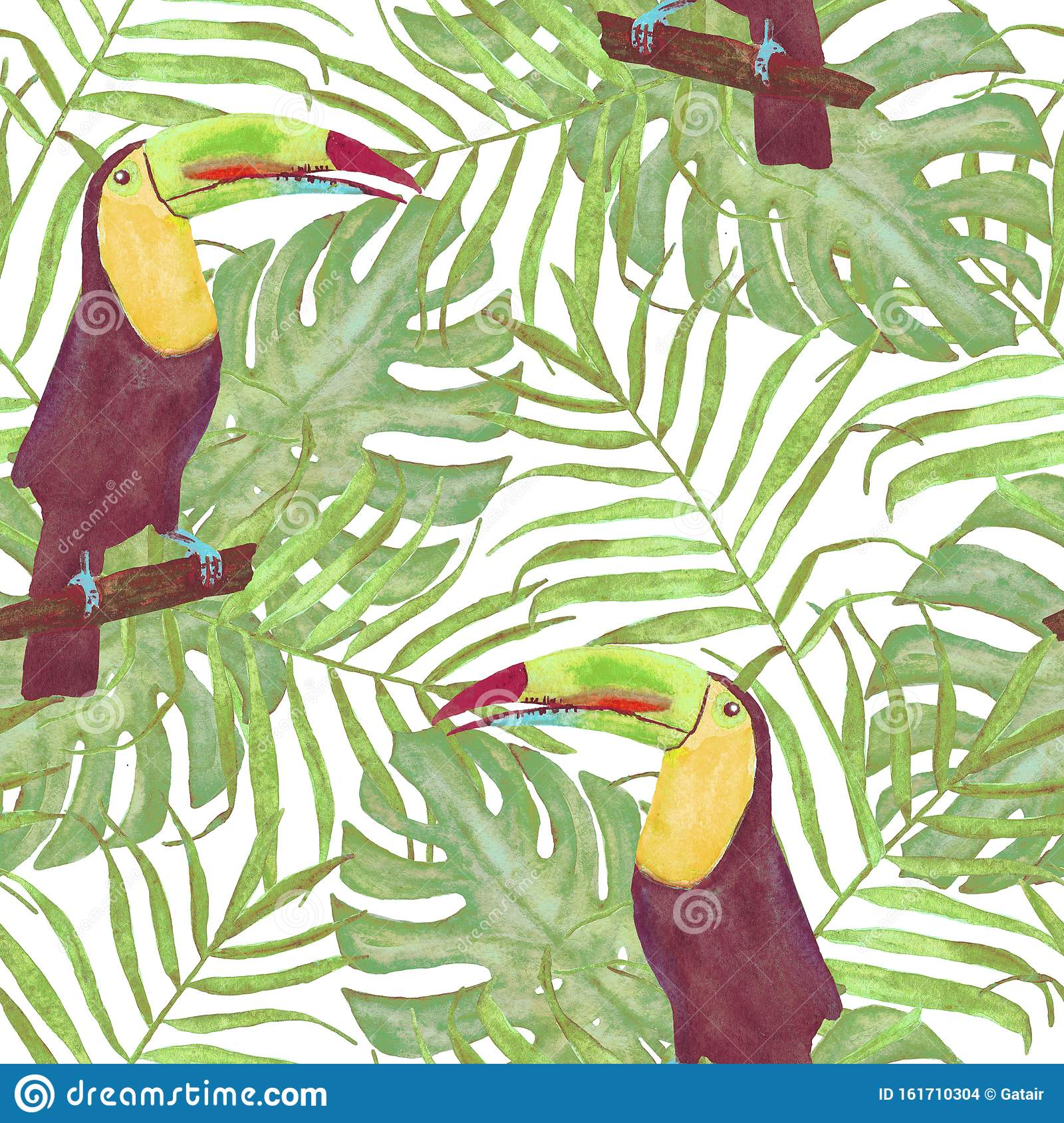 Seamless Watercolor Illustration Of Toucan Bird Tropical Leaves Dense Jungle Pattern With Tropic Summertime Motif Palm Leaves Stock Illustration Illustration Of Monstera Parrot 161710304 Find images of tropical leaves. dreamstime com