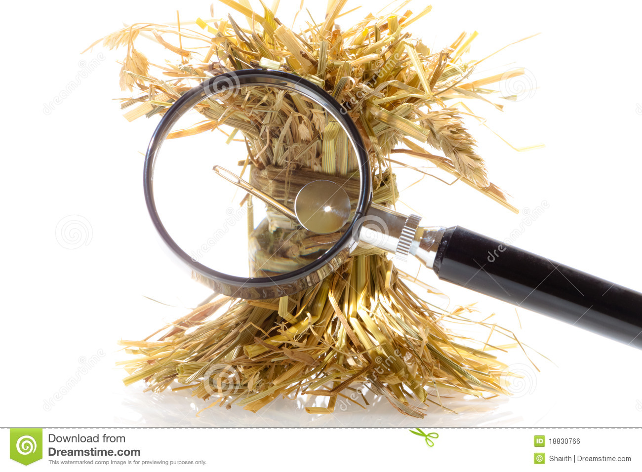 Search Needle Haystack Ase Worst Ways Choose Investment Advisor