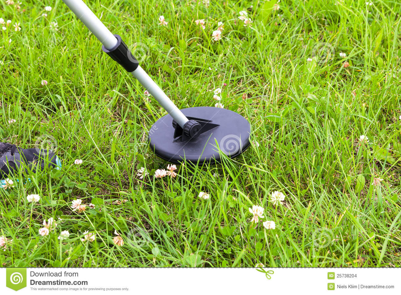 Searching a lawn with a metal detector