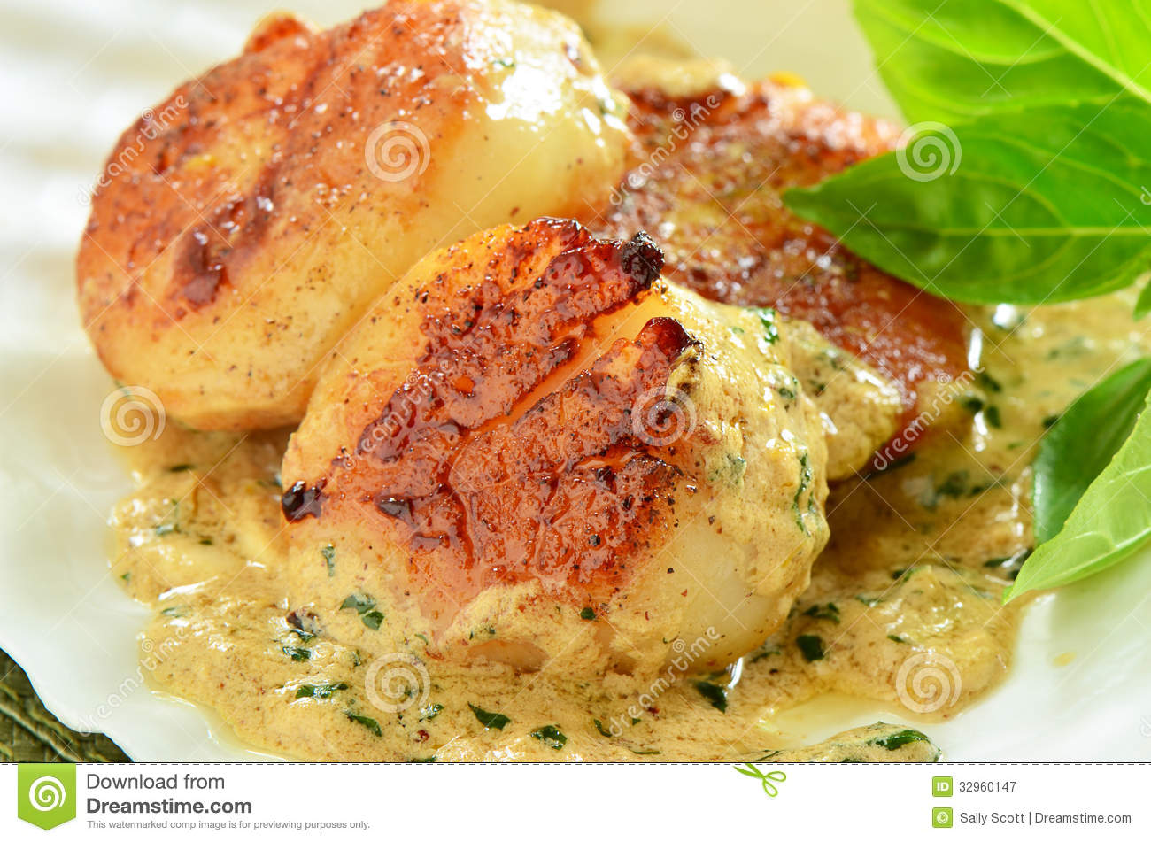 Seared scallops with creamy herb butter sauce in natural scallop shell ...