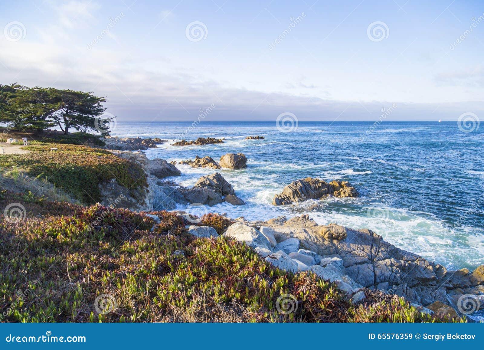 Seascape da baía de Monterey no por do sol no bosque pacífico, Califórnia, EUA
