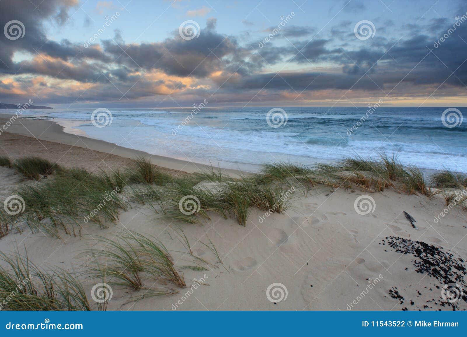 Seascape dunes