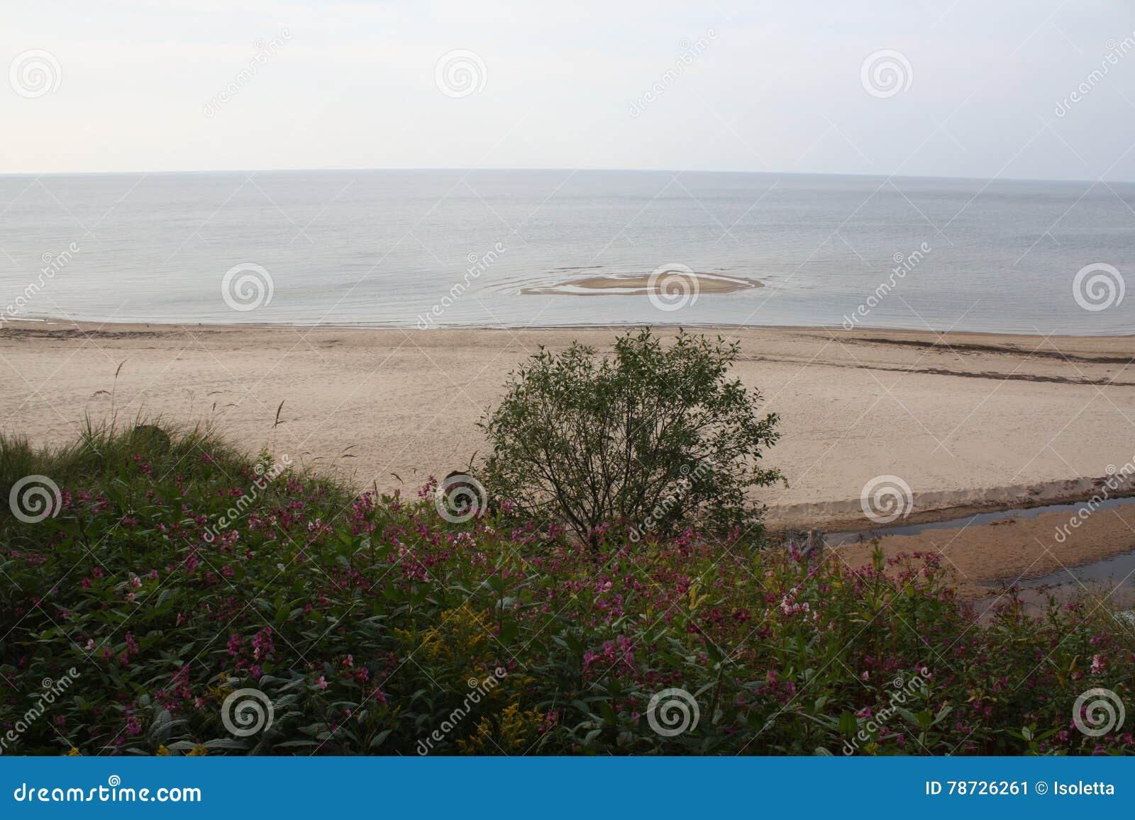 Seascape i Lettland