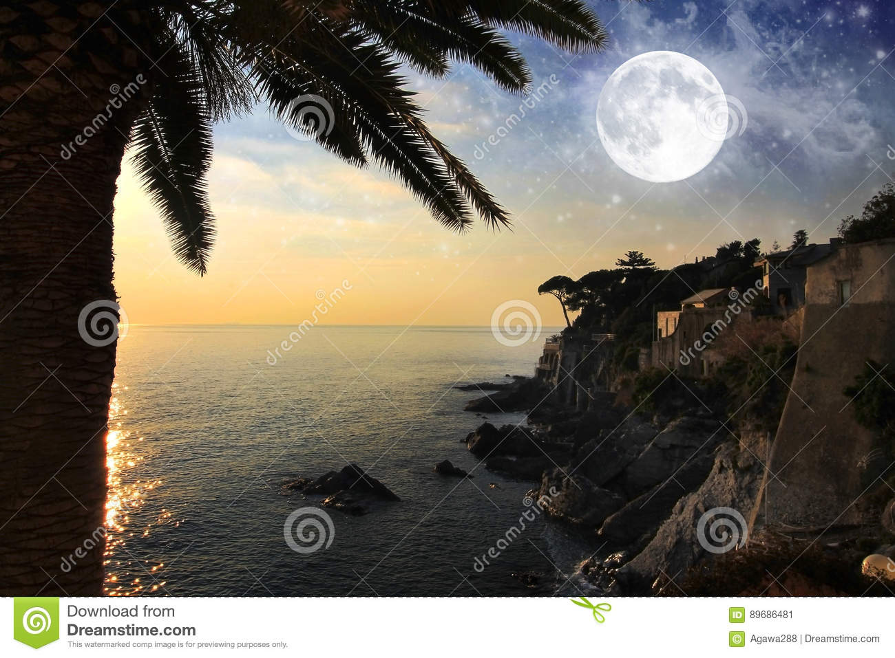 Seascape with palm, moon and stars on the sky.