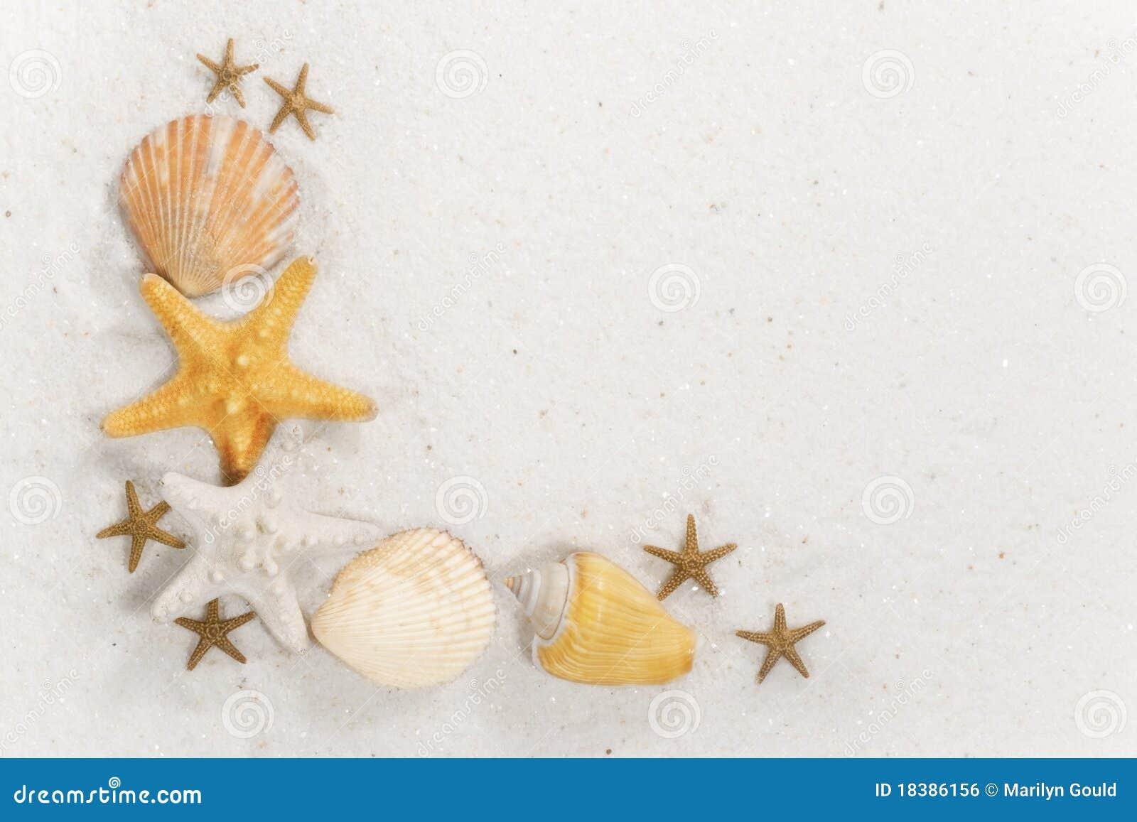 Seashell граници