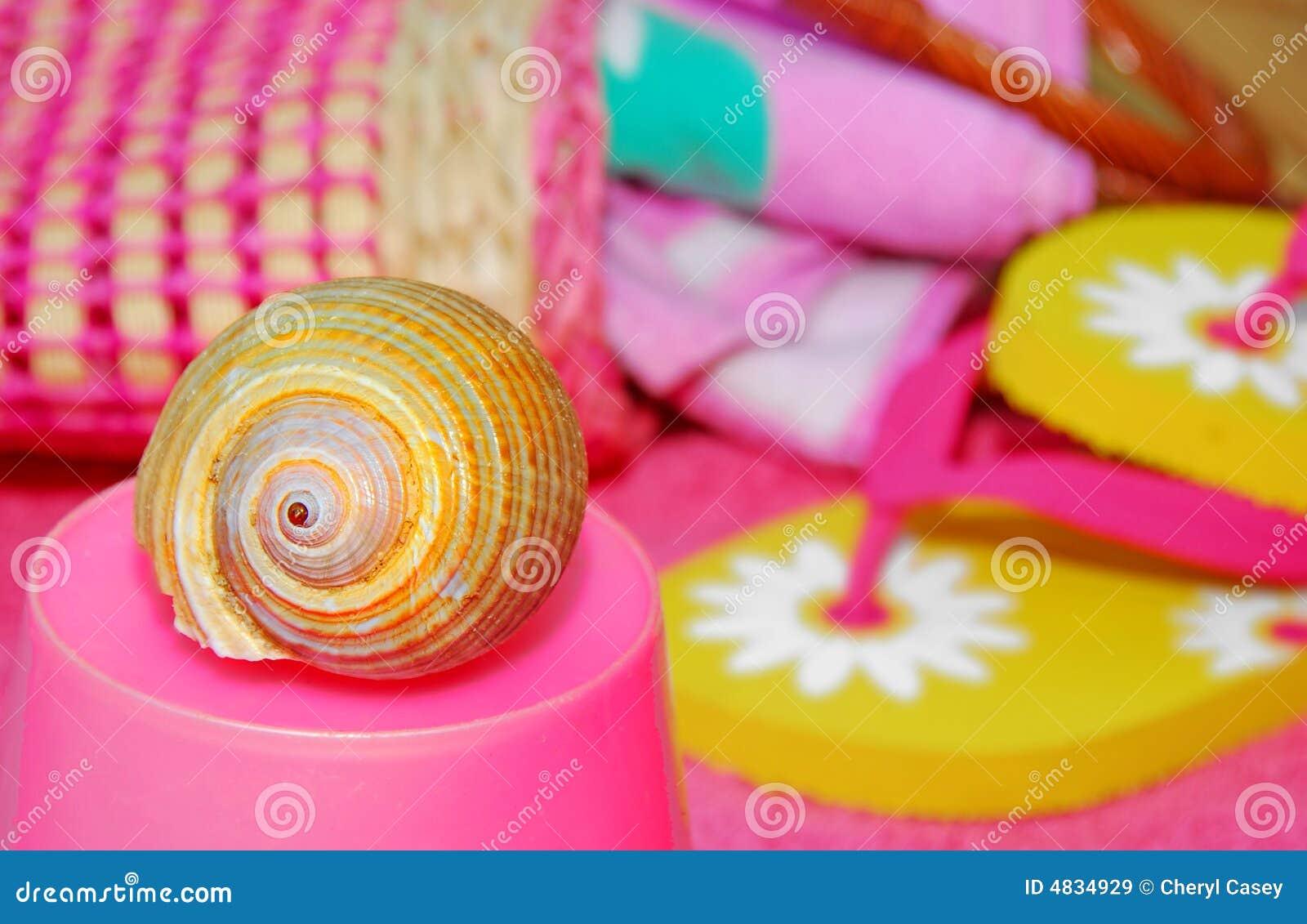 Seashell пляжа вспомогательного оборудования